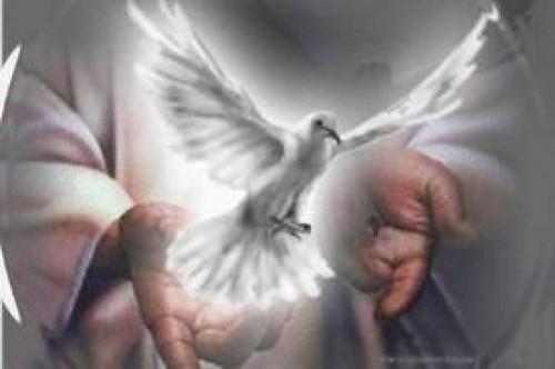 espiritu santo - daniel calveti